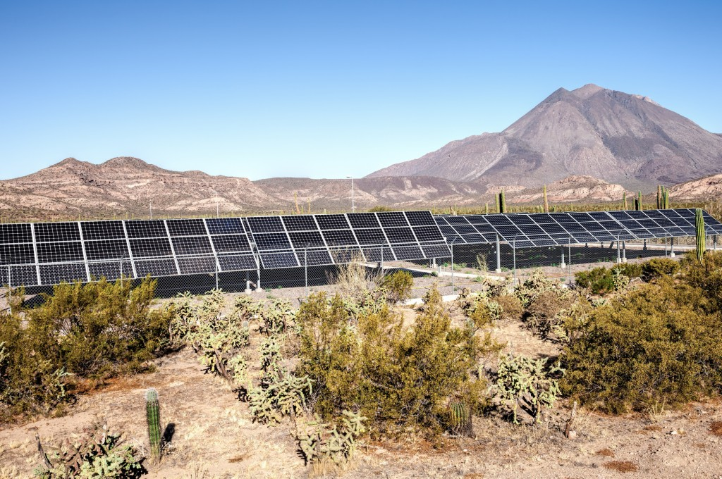 The panels of a solar plant in the middle of the desert of Baja California, surrounded by cacti, with the Las Virgenes vulcano on the background.